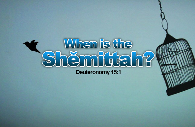 Httpwww Overlordsofchaos Comhtmlorigin Of The Word Jew Html: How Will Concerned People Prepare For The Shemitah